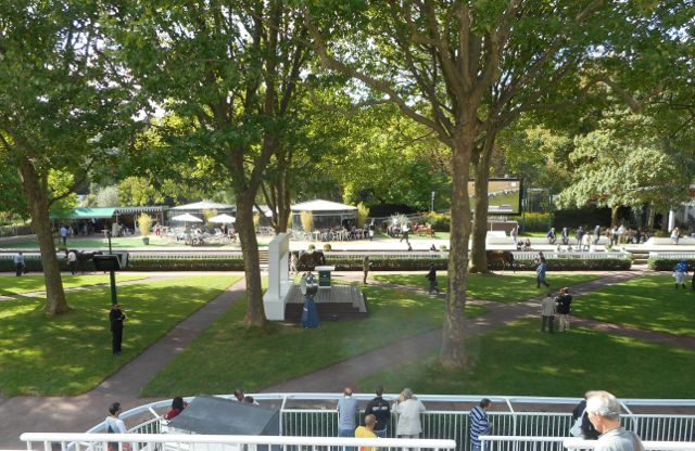 The paddock at Longchamp