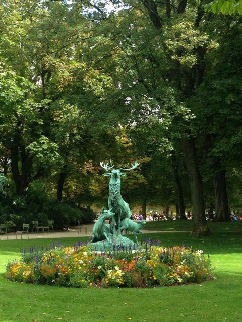 Stag family in Luxemburg Garden