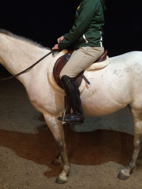 "Hermes Oxer 1. There should be at least 4"" between my honey and the back of the saddle. Not happening here."