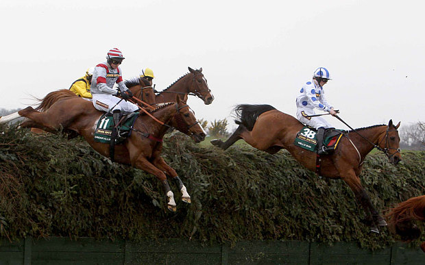 Dream Alliance in a steeplechase race