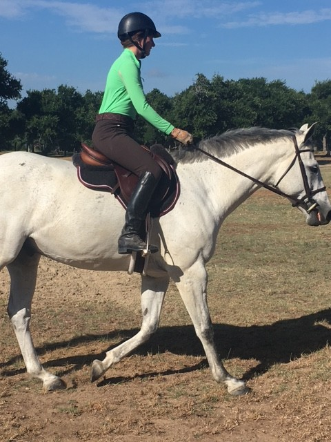 Shirt is EIS (made in USA), breeches are Tailored Sportsman (made in USA), boots are Justin Eq (made in China, no longer available), saddle is Antares (made in France), saddle pad is Mattes (made in Poland), bridle is Dover Crown (I think made in India, but def not England or USA), stirrup leathers are Prestige (made in Italy), irons are from Beval (no idea where they are made), helmet is Ovation (probably made in Asia, but not sure where)