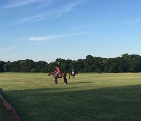 At first I generally was only able to hit the ball when the horse was standing still. By the end of the evening I was able to hit it while the horse was trotting. HUGE progress!