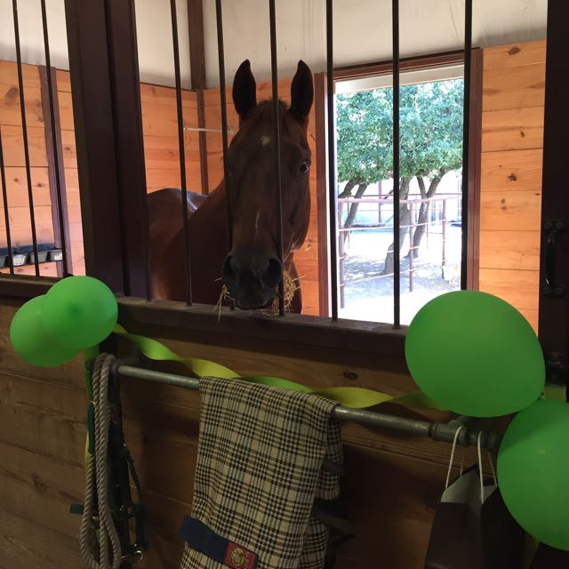 Jaguar in his Retirement Party stall decorations